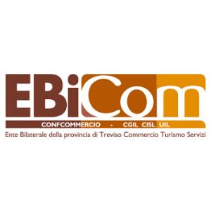 ebicom300x300